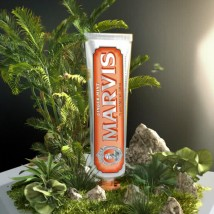 MRV603-Marvis-Ginger-Mint-Toothpaste_1024x1024